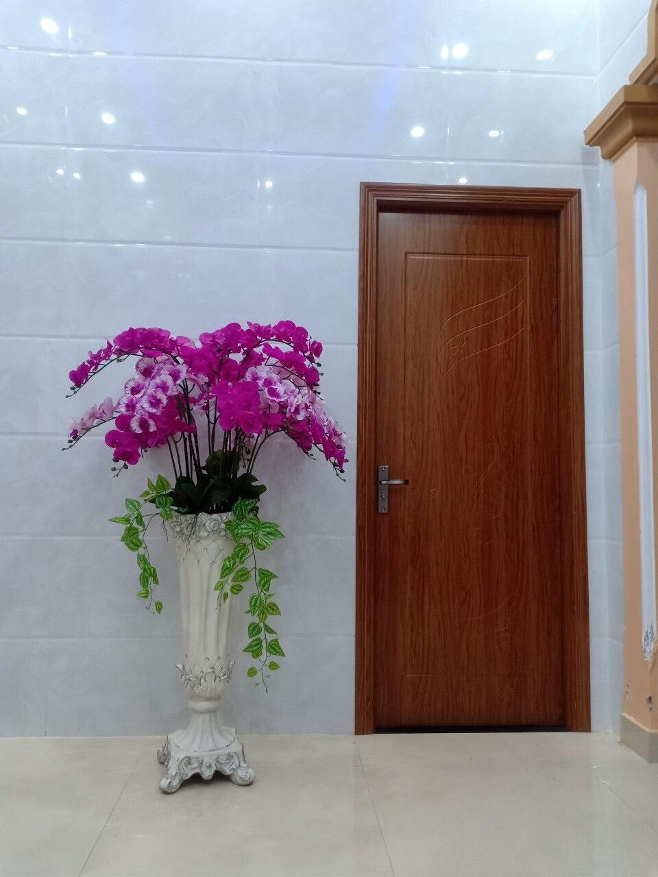 mẫu cửa nhựa gỗ composite LX 34